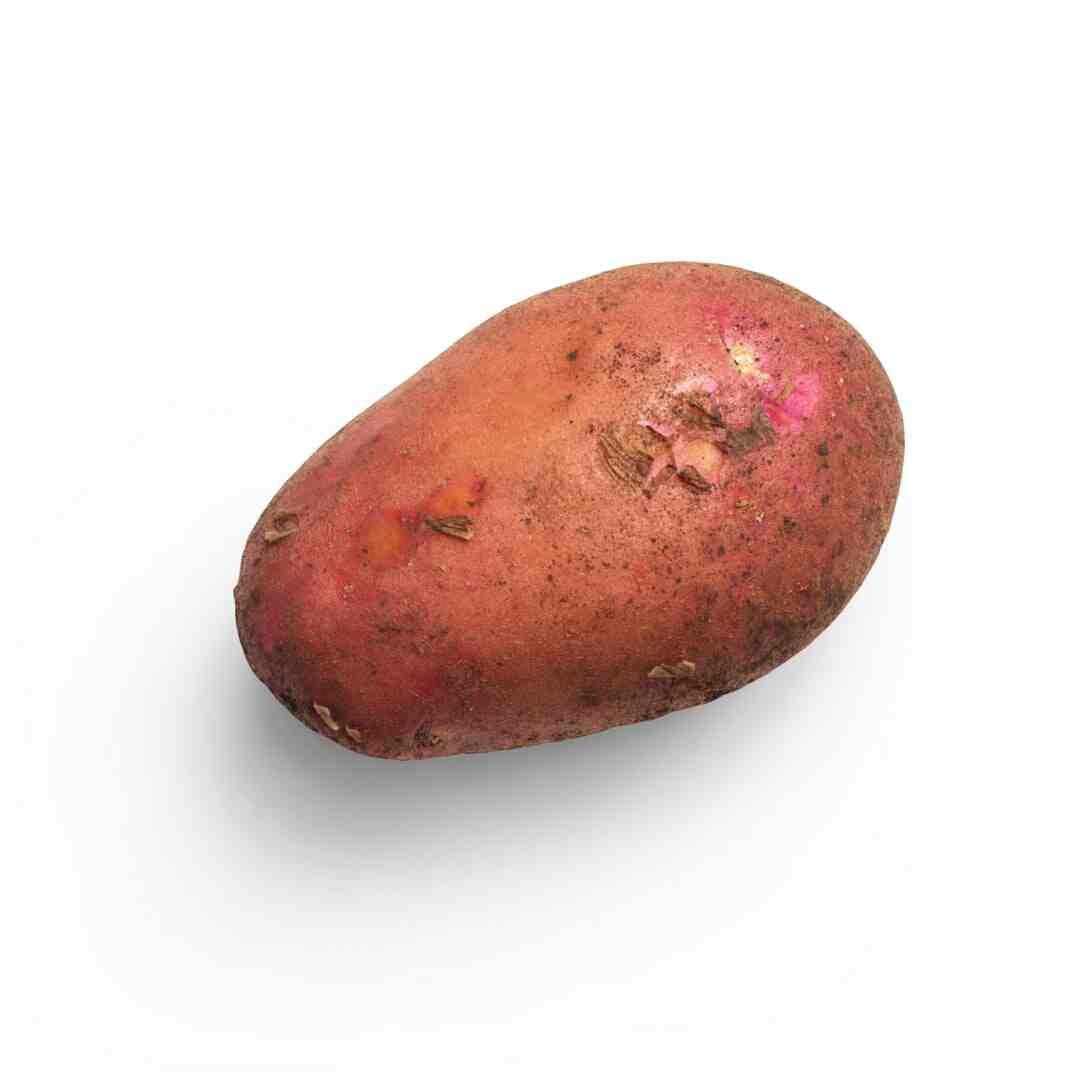 Pomme de terre purée